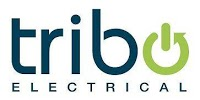 Tribo Electrical 217930 Image 2