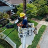 Positive Electrical Contracts Ltd avatar